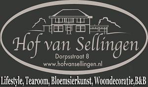 logo-hof-van-sellingen-grijs-300